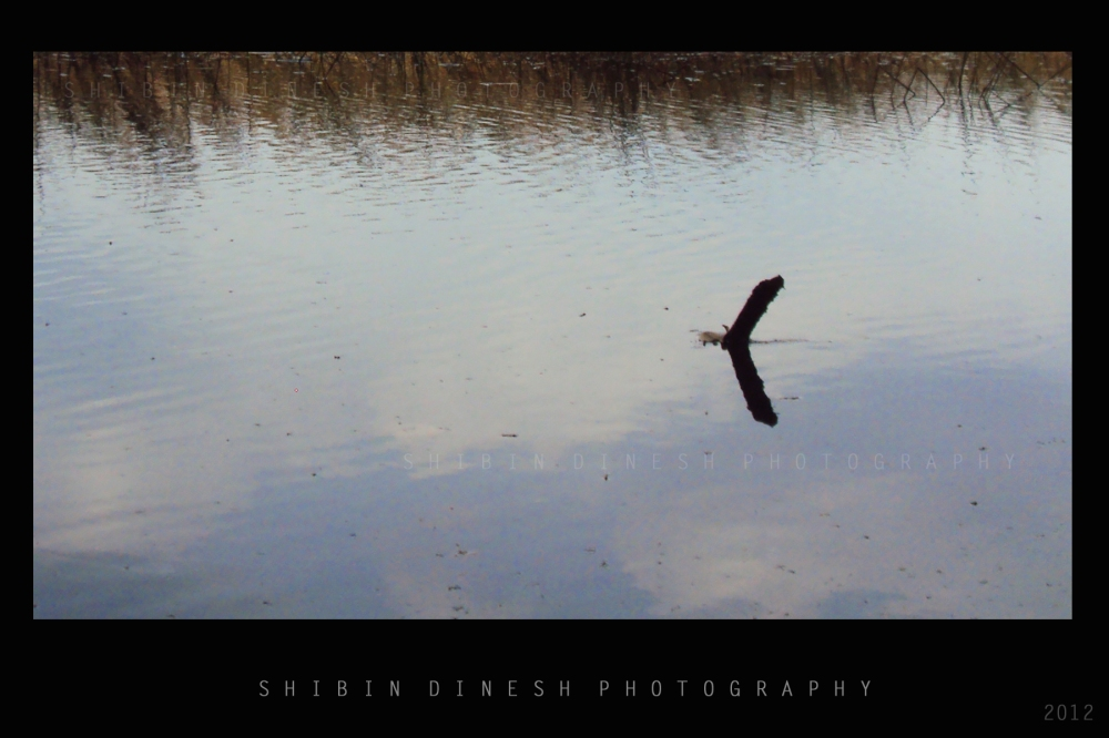 »  Weekly Photo Challenge: Reflections